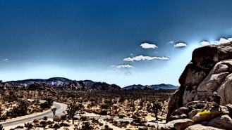 Joshua_Tree_NP002-1
